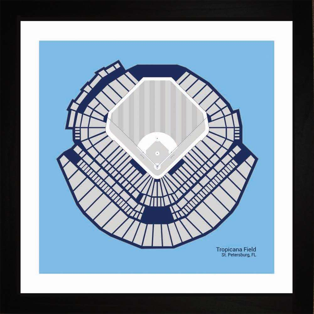 Tropicana Field, Tampa Bay Rays, 16x16