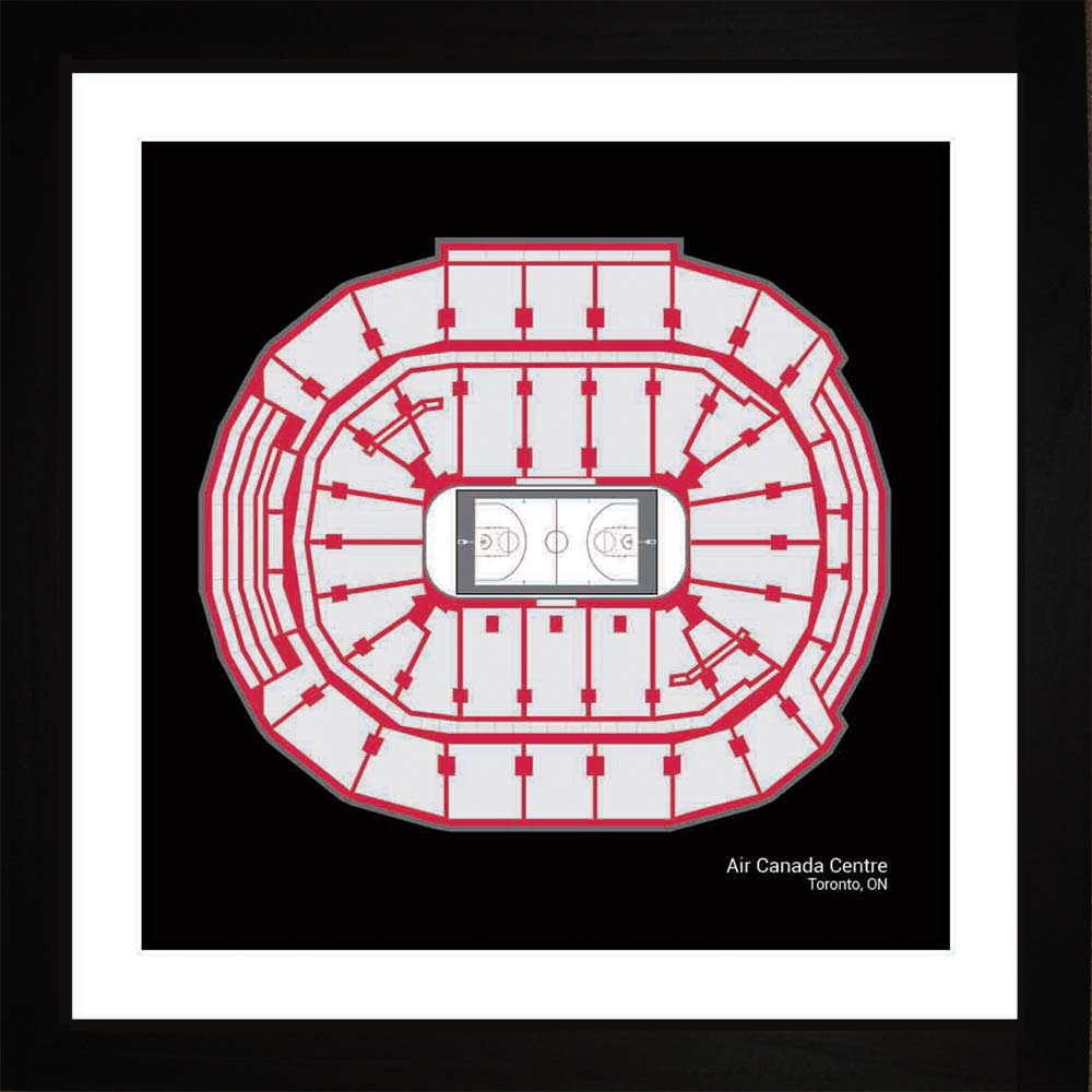 Air Canada Centre, Toronto Raptors, 16x16
