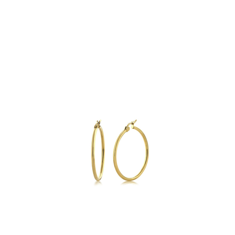 gold hoops-Meira T