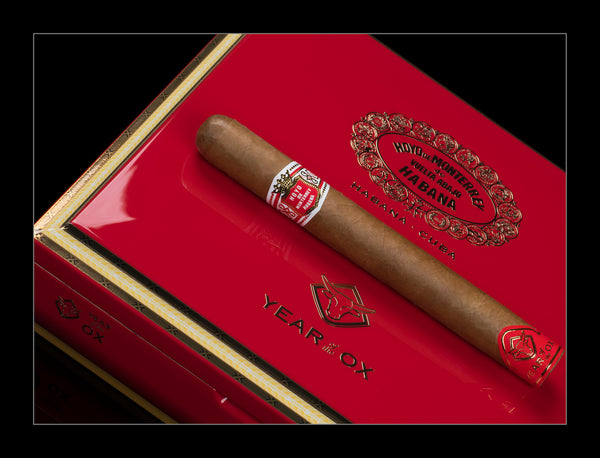 Hoyo De Monterrey Primavera - Year of the Ox