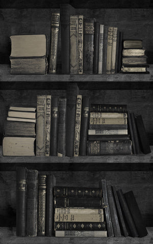 Dark Bookcase Wallpaper by Mineheart