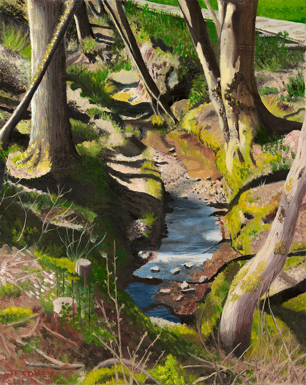 Stream in Walshes Park, Winter by Jeannette Towey