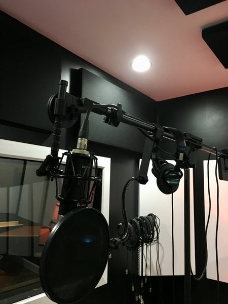 Latch Lake Mic King 2200 - Pro Audio Boutique studio installations