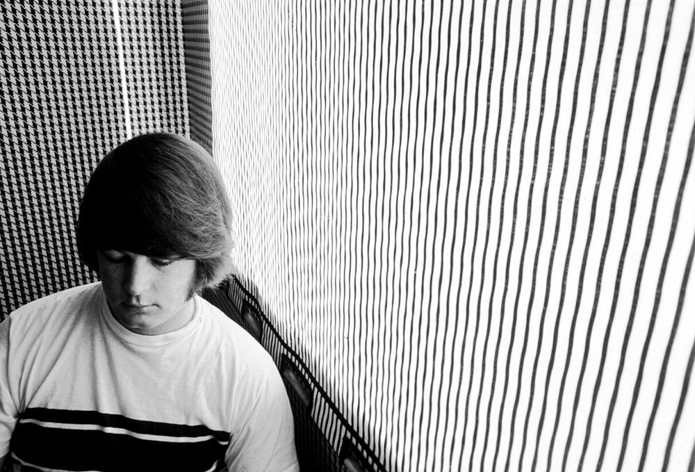 The Beach Boys - Brian Wilson 14
