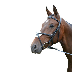 HY - Mexican Grackle noseband