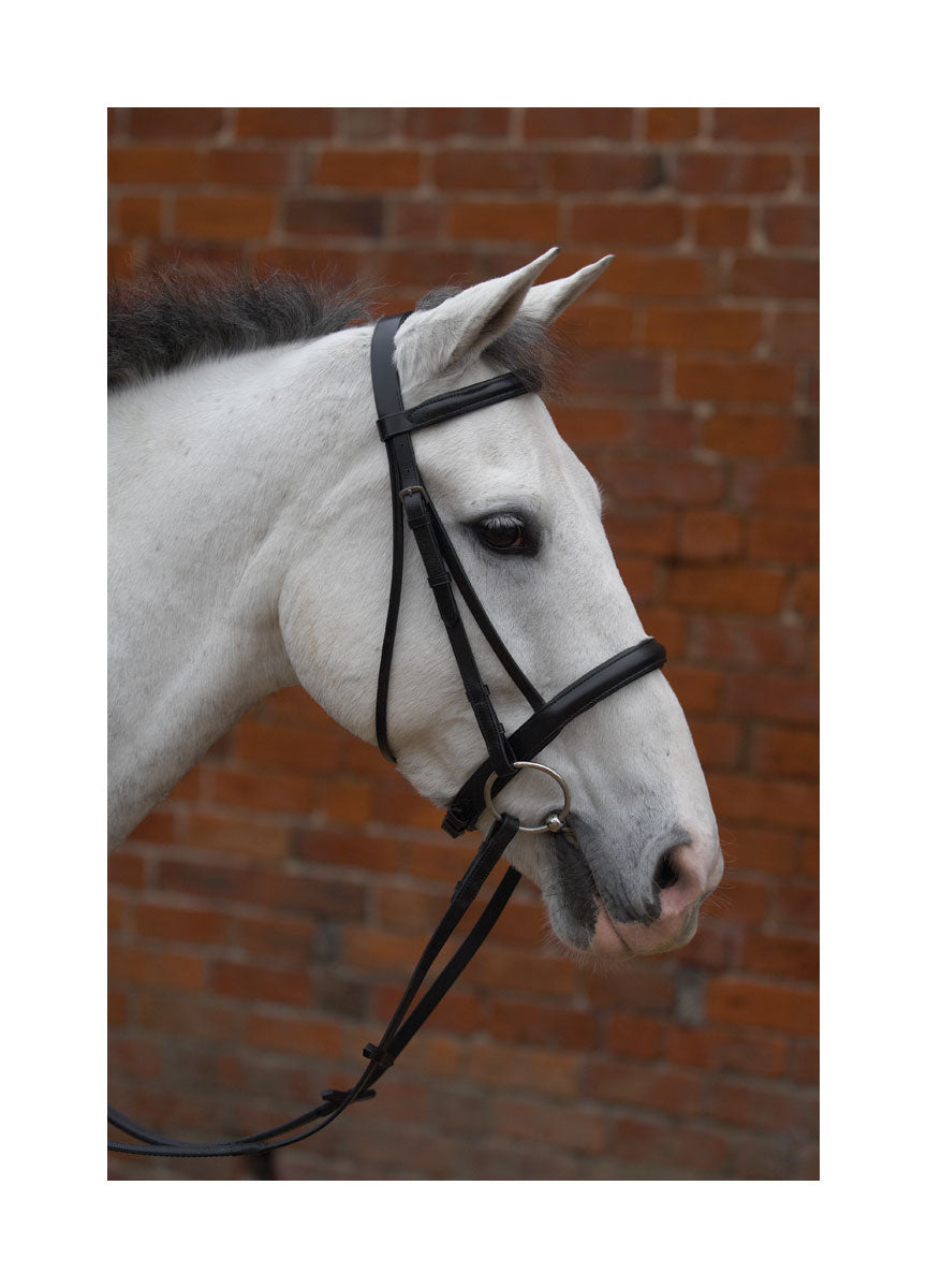 Hy Caveson Bridle with Rubber Reins