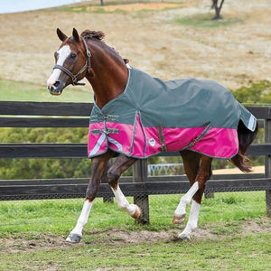 Weatherbeeta -  Comfitee Plus Dynamic lite turnout