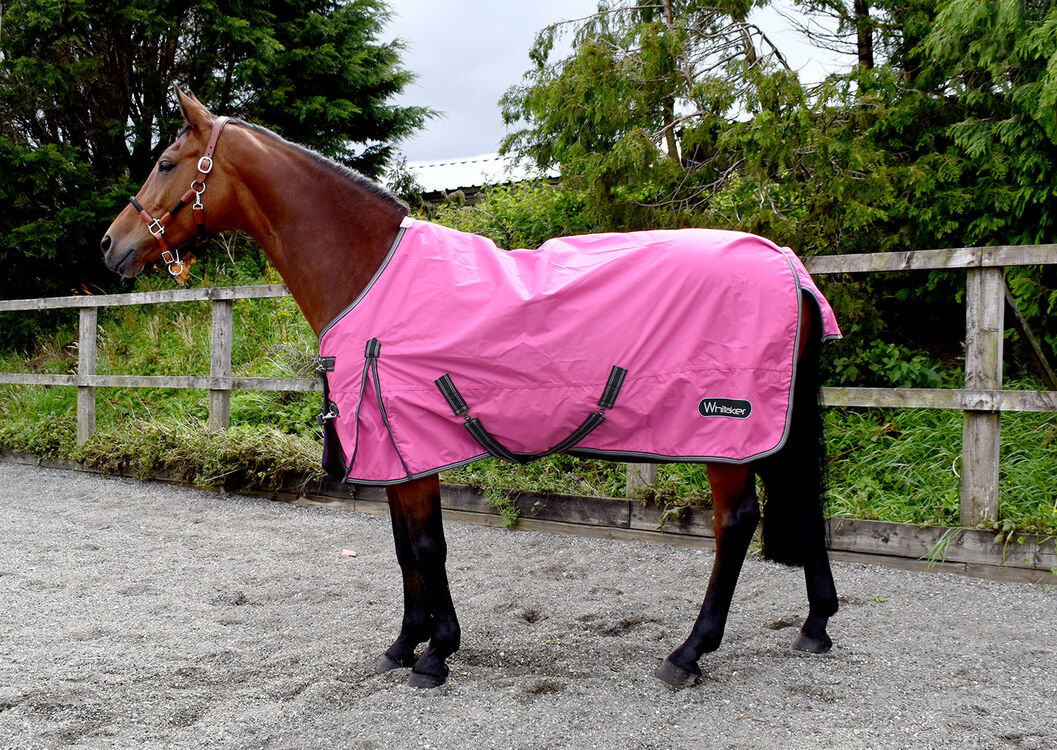 Whitaker Turnout Rug Lightweight Lydgate 0 Gm Pink