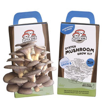 Little Acre Mushroom Growing Kit