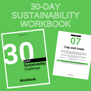 30-Day Sustainability Challenge Workbook