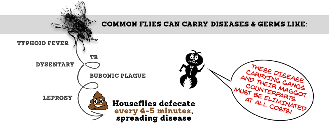 Common Flies Can Carry Diseases & Germs Liuke: Typhoid Fever, TB, Dysentary, Bubonic, and Leprosy. Housefiles defecate every 4-5 minutes, spreading disease.