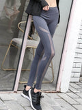 Bold Performix Leggings