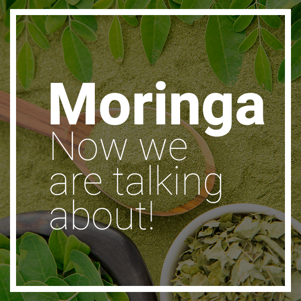 Moringa: Now We Are Talking About Super!