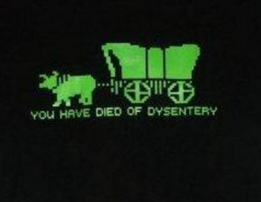 You Have Died Of Dysentery T-shirt-tvso