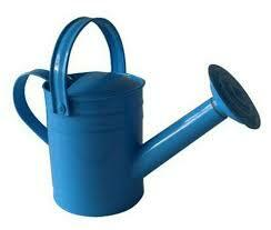 Twigz | Watering Can assorted colours