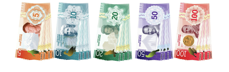 Every Educaid Small NZ Note Set