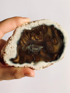 Polished Agate Slice