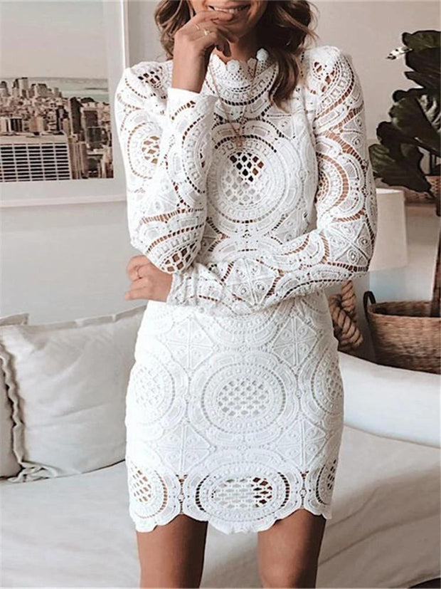 Women's Sexy Lace Cutout Dress