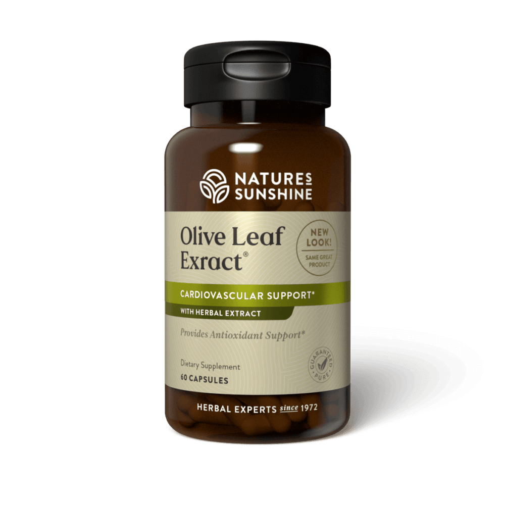 The olive tree has traditionally been revered for its many qualities from the olive leaves. Olive leaf is often recommended to help support healthy immune function.