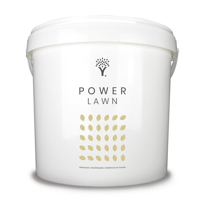 Power Lawn Grass Seed