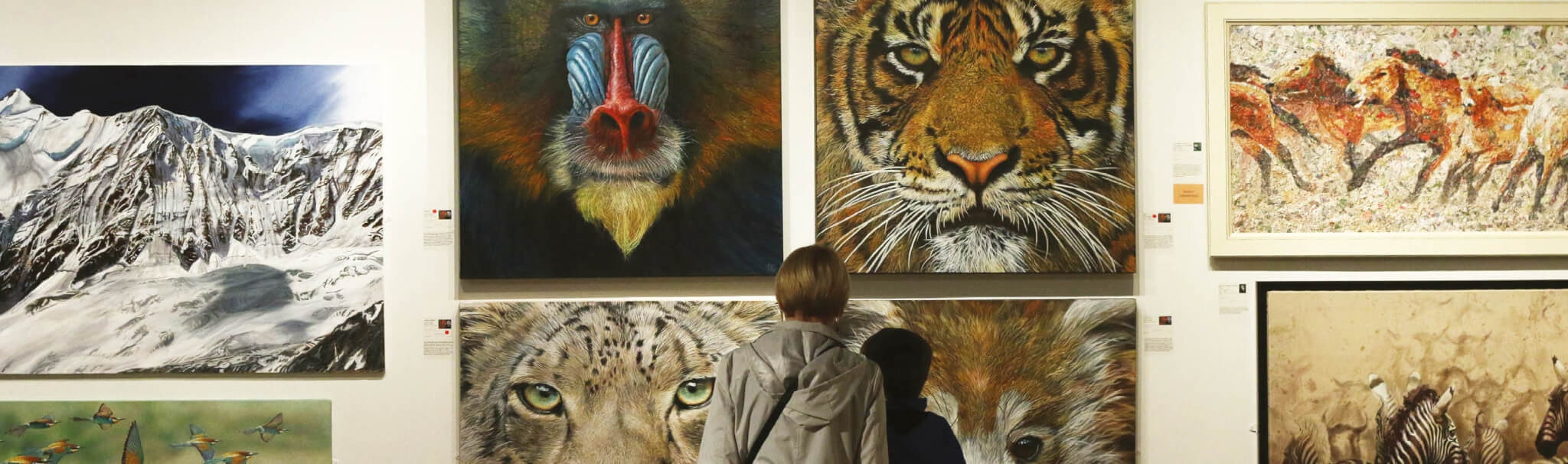 Wildlife Artist Of The Year 2020 Competition