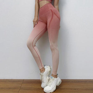 Women Ombre Seamless Leggings High Waist Gym Energy Seamless Leggings Yoga Pants Girl/Female  Sport Workout tights Pants