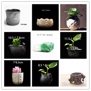 Natural Plant Concrete Pot Molds DIY 3D Cactus Succulents Flower Planter Silicone Cement Mold Home Garden Decorating Craft Mould