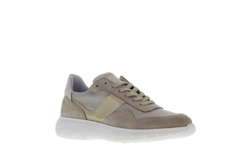 Haley 12-e beige suede/mesh/gold - white outsole