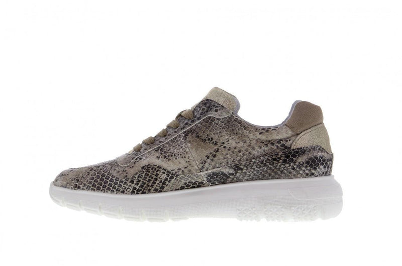 Haley 3-d p/w  taupe snake basic jogger - white sole
