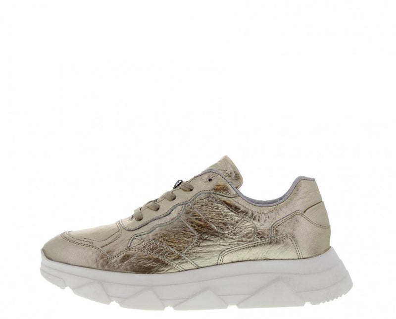 Kady fat 10-h gold tumbled leather sneaker - white sole