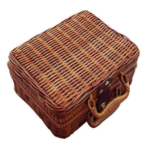 Rattan Wicker Mini Suitcase Trunk Storage Bag - Fifth Avenue Kids, subsidiary of Frockalicious