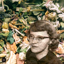 Load image into Gallery viewer, Oh Connie Wise Woman Herbal Tea/Infusion
