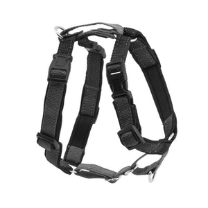3 in 1™ Harness and Car Restraint