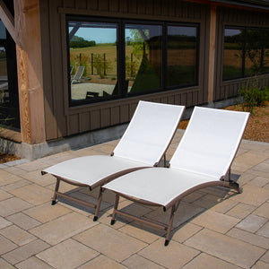 Clearwater 6 Position Aluminum Lounger 2 pc Set