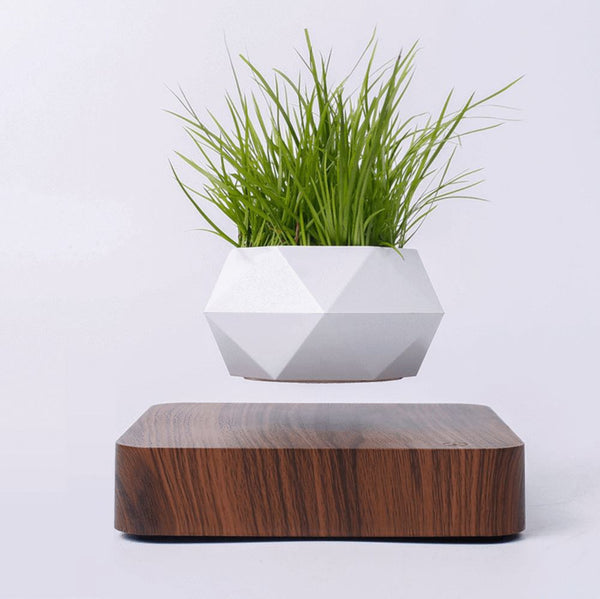 Levitating Plant Pot MNMLST Dark Wood US