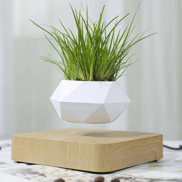 Levitating Plant Pot MNMLST DESIGNS Beige Wood USA