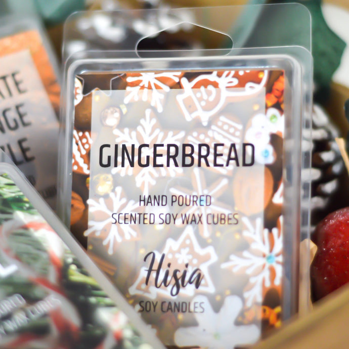 GINGERBREAD SOY WAX MELTS