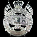 AUSTRALIAN ARMY 1st ARMOURED REGIMENT HAT BADGE