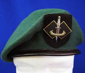 AUSTRALIAN ARMY 2 COMMANDO BERET & BADGE