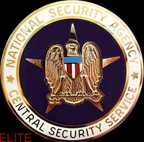 U.S. NATIONAL SECURITY CIA BREAST BADGE