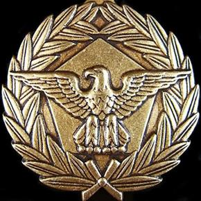U.S. DEFENSE MERITORIOUS SERVICE MEDAL