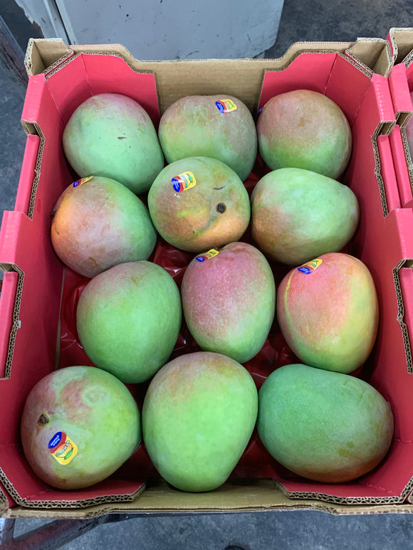 Australia R2E2/Keitt Mango 1pc Size12 offer!