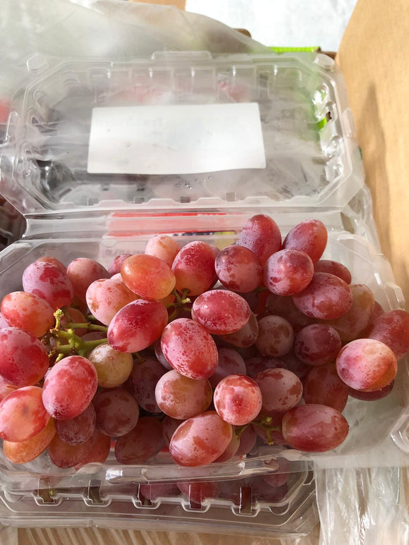 Egypt Red Seedless grapes 500g