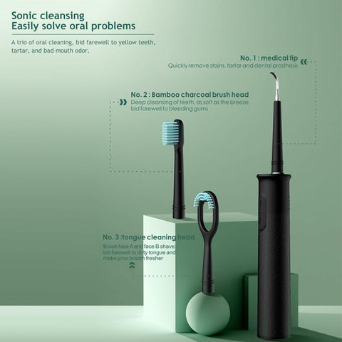 3 in 1 Dental Scaler Replaceable Ultrasonic Tooth Calculus Remover SP