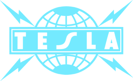 Tesla Official Store logo