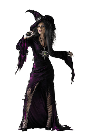 Women's Sorceress Deluxe Costume