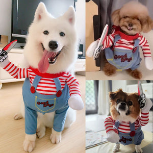 Dog takes a knife and makes funny clothes