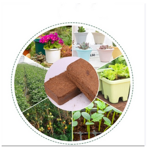 🔥【The Most Popular Nutrient Soil In 2020】Organic Coir Compressed Seed Starting -Coconut Brick🔥