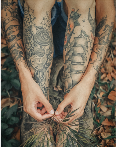 Natural Australian Handmade health, beauty and cleaning. Image of tattoo'd person's arms draped over their legs holding some leaves and sitting on fallen leaves.
