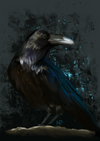 Raven Bird Fine Art Horror Print